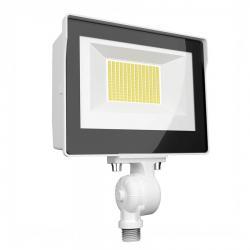 RAB X17FA80W - 80W Ultra-Economy LED Flood Light - Color Selectable