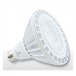 Green Creative 98223 - 25W LED PAR38 HO - 2700K