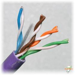 Belden Wire & Cable Co. - 1000FT - 2412 007A1000 - Purple Multi-Conductor Enhanced Category 6 Nonbonded 4-Pair Cable -- #23 AWG - Bare Copper Conductor - Polyvinyl Chloride Outer Jacket