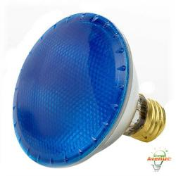 Bulbrite - 683753 - H75PAR30B - Dimmable Halogen Lamp