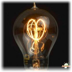Ferrowatt - F1920-12060 - Antique Double Loop Filament Light Bulb -- 60 Watt - 120V - Medium (E26) Base - 500 Lumens
