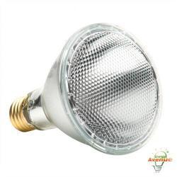 GE 69168 38PAR30L/H/FL25 - 38W PAR30 Halogen Lamp - 2850K