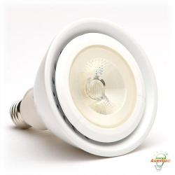 Green Creative - 40633 - 19PAR38G3DIM/830FL40 - PAR38 LED - 120 Watt Halogen Equivalent -- 19 Watt - 3000K - 40&deg Beam Angle