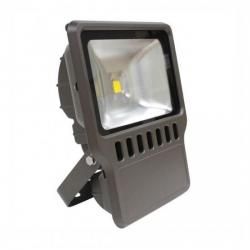 Orbit Industries - LFLC-100W-WW - LED Flood Light
