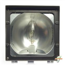RAB Lighting - EZHH100QT - Metal Halide Flood Light -- 100 Watt - 120/208/240/277V - Comes with Metal Halide Lamp - Bronze Finish