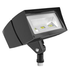 RAB Lighting FFLED18 - 18W LED Flood Light - 5000K