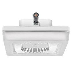 Case of 12 13W U-Bend LED U6 T8 Instant Start//Rapid Start Compatible Lamp L13T8UD5050K