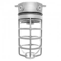 RAB VX100DG - Box Mount - Steel Cage