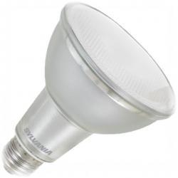 LED - PAR30 - 13 Watt - 75W Halogen Equal