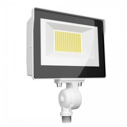 RAB X17FA60W - 60W Ultra-Economy LED Flood Light - Color Selectable