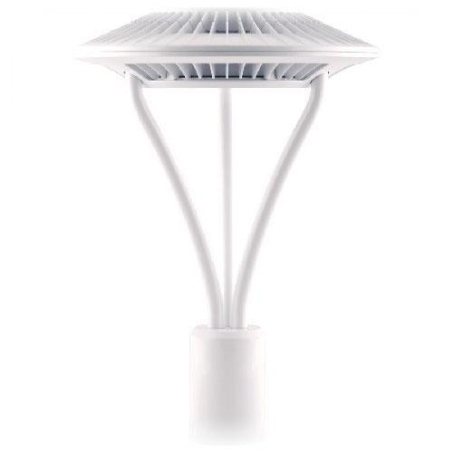 RAB Lighting ALED5T78W LED Post Top Area Light 78 Watt 5100K White Energy A