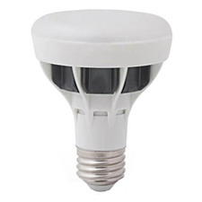 R30 LED Light Bulbs