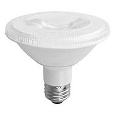 PAR 30SN Light Bulbs