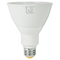 PAR 30 LED Light Bulbs