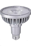 LED R Floods and Par Bulbs