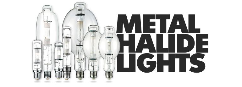Metal Halide Lights thumbnail